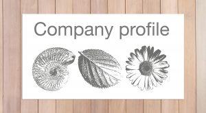 Tormene Group of companies icone istituzionali