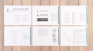 Tormene Group of companies manuale di coordinamento del marchio